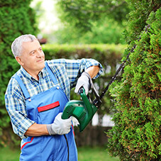 Hedge Cutting Gloves