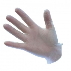 Portwest Powdered Vinyl Disposable Clear Gloves A900CL